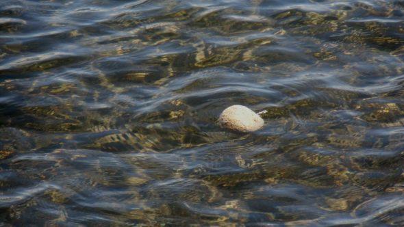 Schwimmende Steine