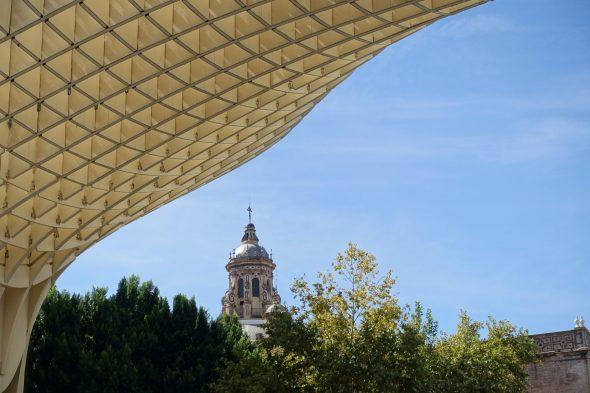 Riesige Pilze mitten in Sevilla